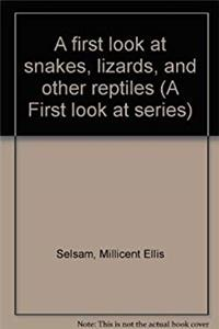 eBook A first look at snakes, lizards, and other reptiles (A First look at series) epub