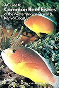eBook A guide to common reef fishes of the western Indian Ocean epub