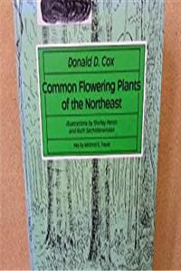 eBook Common Flowering Plants of the Northeast epub